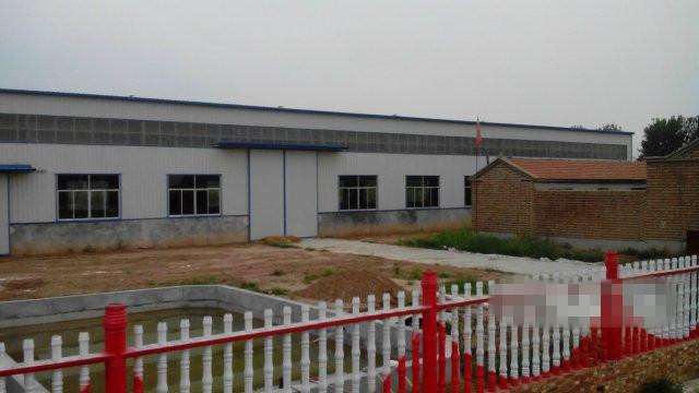 大型钢结构厂房 新厂房出租
