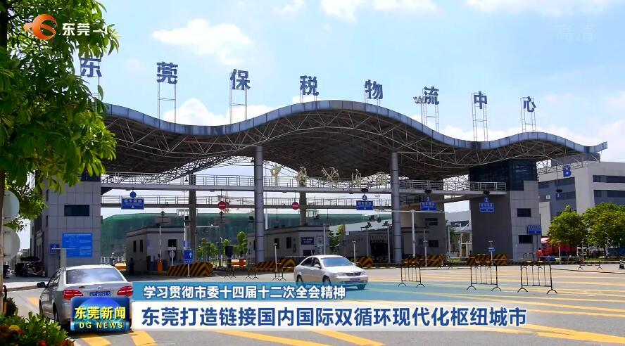 东莞打造链接国内国际双循环现代化枢纽城市